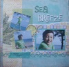 Sea_breeze