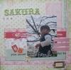 Sakura_azu2_2