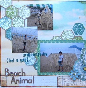 Beach_animal
